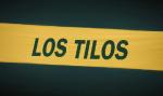 Los Tilos bandera